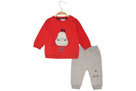 Cotton sweatshirt set with applique